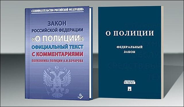 ст 29 закон о полиции комментарий русской озвучкой русскими