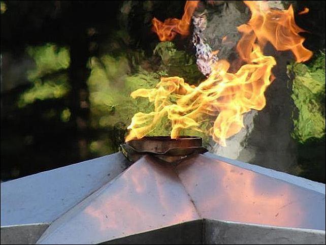 Два молодых человека затушили Вечный огонь по приколу .