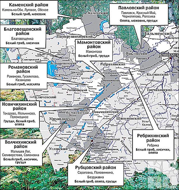 грибные места краснодарского края на карте время своего
