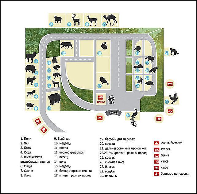 Контактный зоопарк схема
