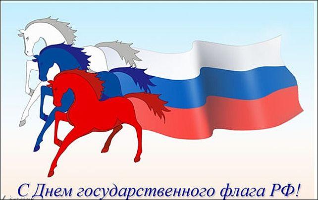 Жители Ярославля создадут огромный коллаж в виде флага России - YarNews.net