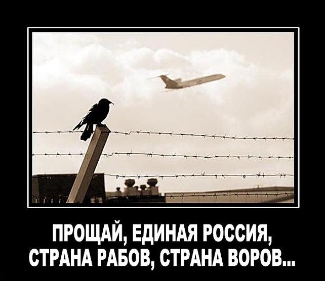 Куда валить из россии без денег его