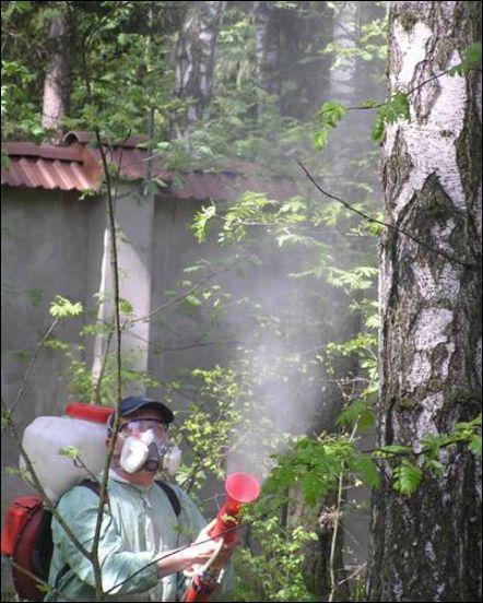 защита лесов от вредных организмов обеспечению деятельности
