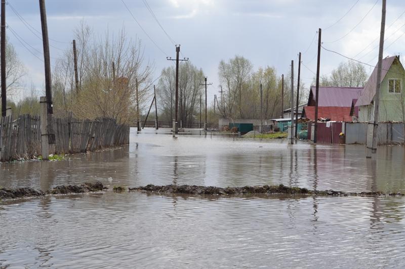 ... вновь прибывает в реке Обь у Барнаула: www.amic.ru/news/307587