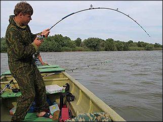 вендеря для рыбалки