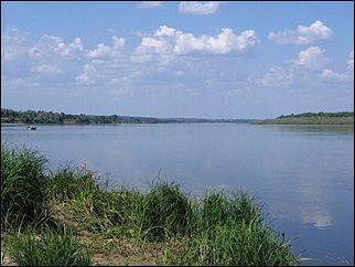 Кто самовольно перекрыл реку Кулунда в Алтайском крае?