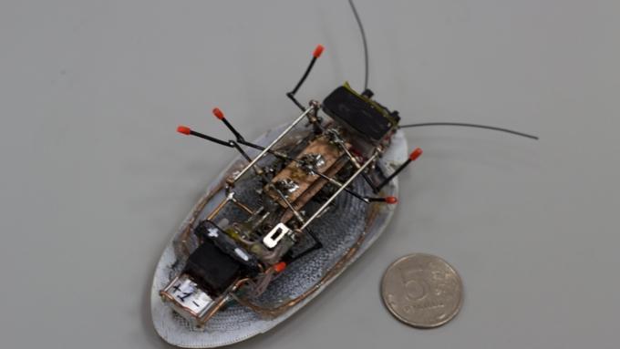 Дмитрий Ливанов предложил массово производить роботов-тараканов для детей