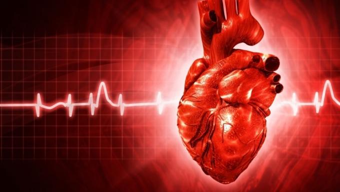 Ученые: Пиво положительно влияет наработу сердца
