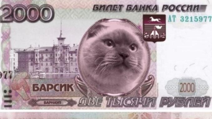 Мэр барнаула кот
