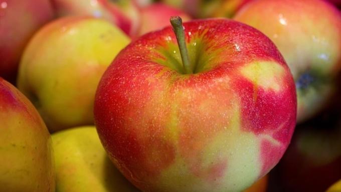 Поставки яблок из Республики Беларусь вРФ в 5 раз превысили собранный урожай