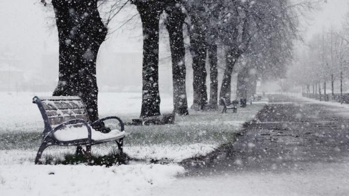 Сегодня вАлтайском крае потеплеет до +10°C, вБарнауле— до +5°C