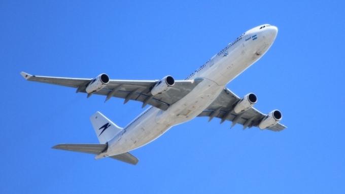 ВСША пассажирский самолет аварийно сел из-за птицы вдвигателе