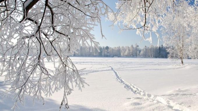 ВАлтайском крае передано штормовое предупреждение на17декабря