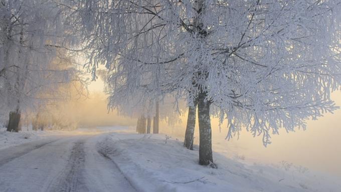 ВАлтайском крае потеплеет до +1 градуса, однако сохранится штормовое предупреждение