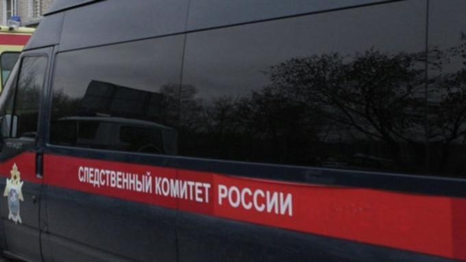 Гражданин Алтайского края зарезал знакомого изакопал его тело всугробе— СК