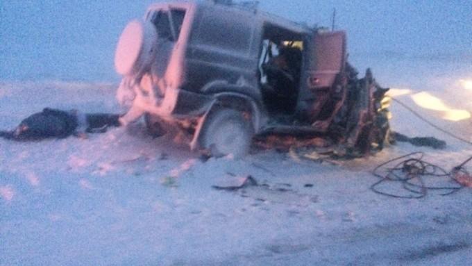 ВГИБДД поведали подробности ужасной трагедии натрассе А-349