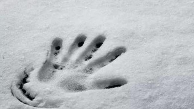 ВБарнауле cотрудники экстренных служб вынесли излеса замерзшего мужчину