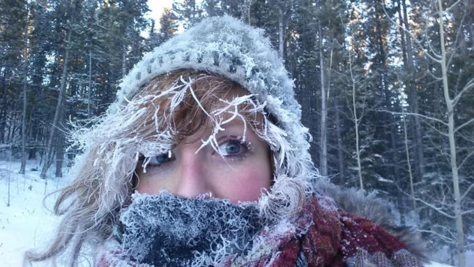 Зимой данного года начинается новый ледниковый период— Ученые