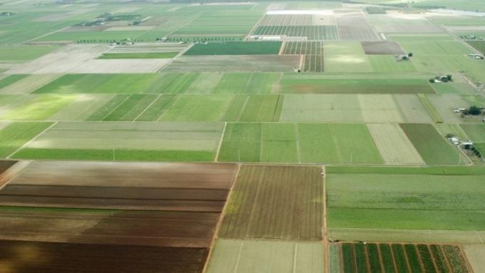 Петербург иЛенобласть бьются задальневосточные гектары