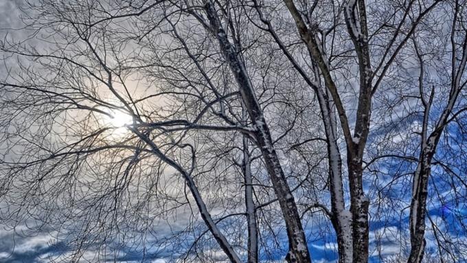 Прогноз погоды на15февраля: вАлтайском крае похолодает до-34С
