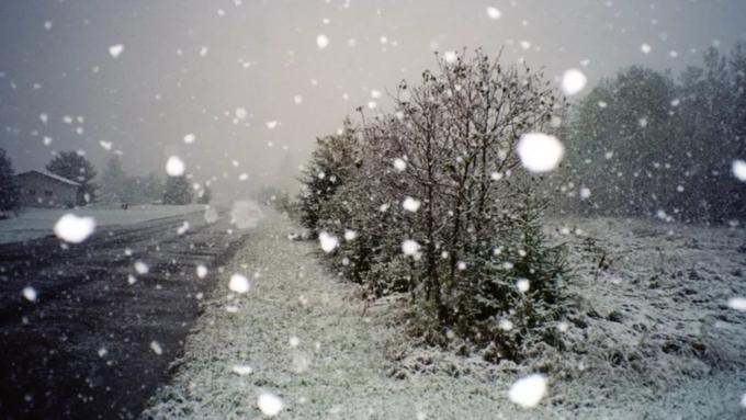 Снег игололед обещают жителям Алтайского края 3марта