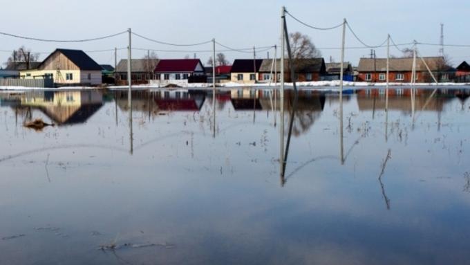 Главный алтайский синоптик: воды вБарнауле будет большое количество