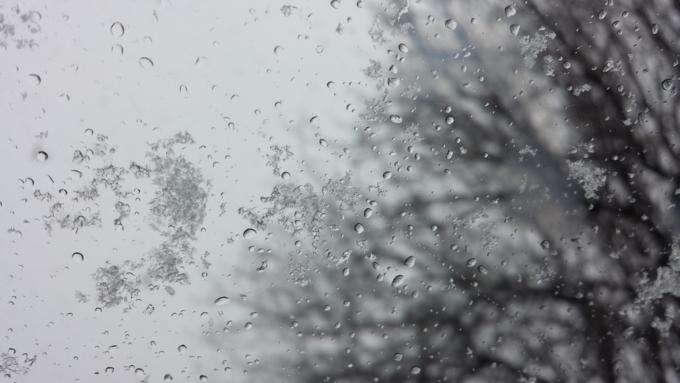 Снег сдождем исильный ветер ожидаются вначале рабочей недели вАлтайском крае
