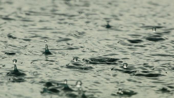 Апрель в столицеРФ стал самым дождливым вХХI веке