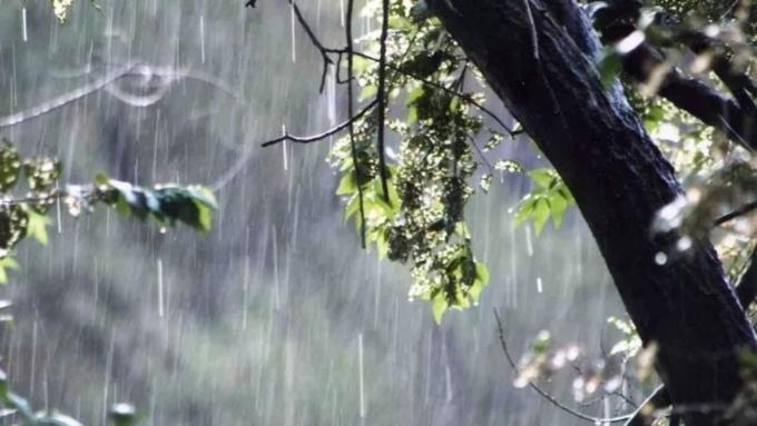 ВАлтайском крае вновь будет штормить— Грозы иград