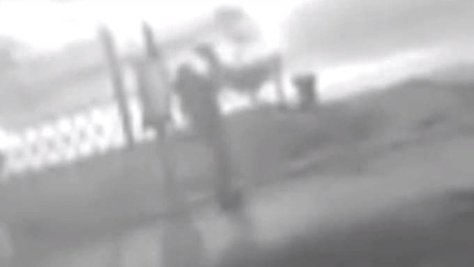 Отцу-извергу сУралмаша угрожает 15 лет тюрьмы запопытку убийства сына