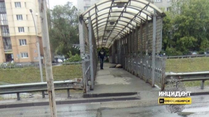 Впереходе наИпподромской новосибирцы обнаружили труп мужчины