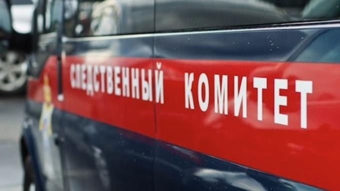 Алтайская школьница получила срок зараспространение наркотиков