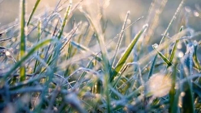 Зима недалеко: вАлтайском крае ожидаются заморозки