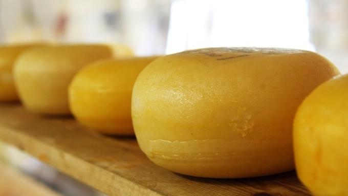 Здоровый стиль жизни . Алтайский фестиваль сыра подкрепили фитнесом