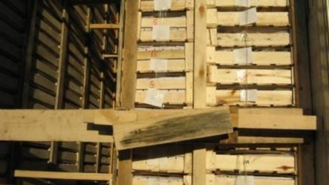 Россельхознадзор непропустил 32 тонны казахстанских дынь