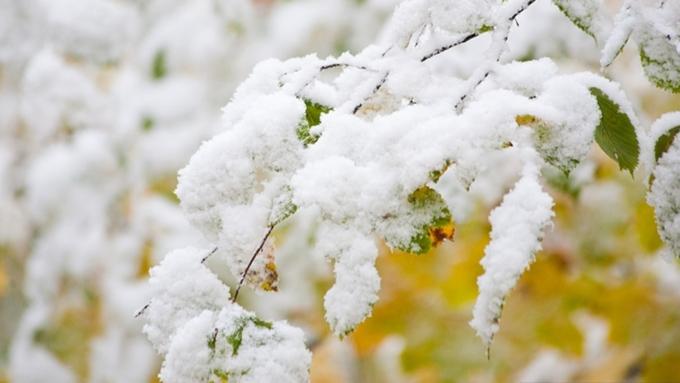 ВКрасноярске выпал 1-ый снег вперемешку сградом