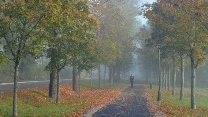 Гидрометцентр: 14сентября вТатарстане ожидаются грозы и +26˚
