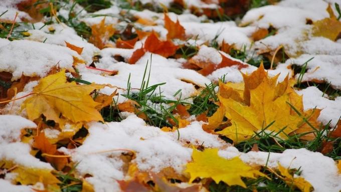 Снег ихолод наступают наАлтайский край
