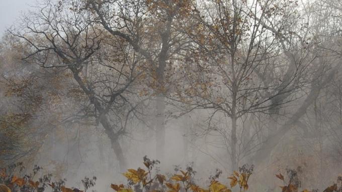 Ветер, туман игололёд: опогоде вАлтайском крае 5октября