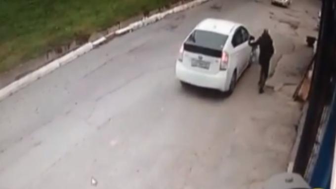 ВоВладивостоке девушка умышленно переехала собаку наглазах уее владельца