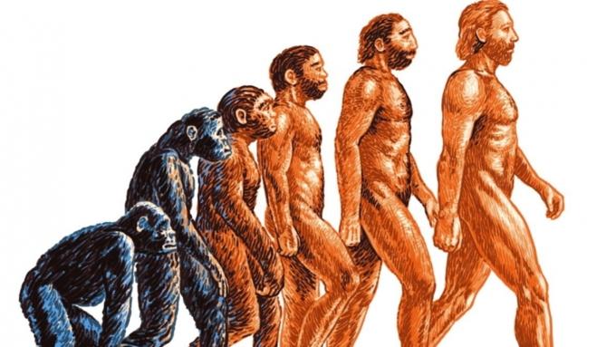 Эволюция живых организмов не заканчивается — Ученые