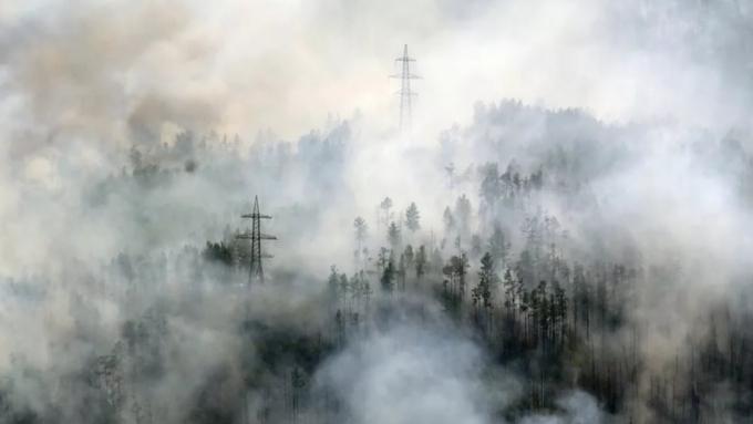 Владивосток окутал дым отлесных пожаров