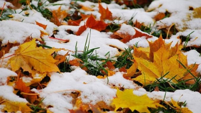 Снег и гололед ждут жителей Алтайского края 7 ноября
