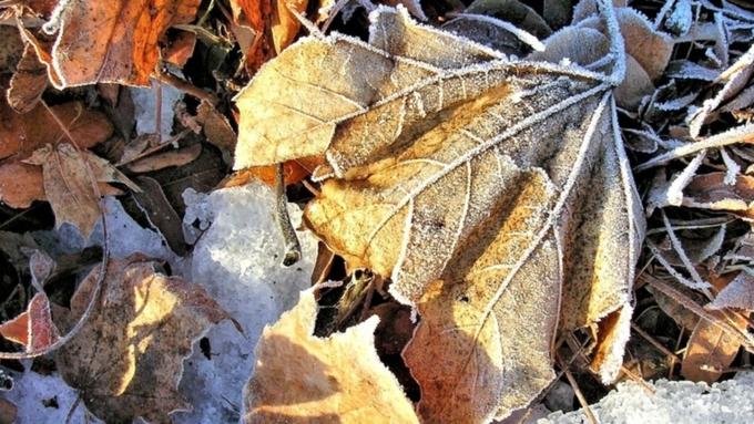 НаЧелябинск надвигается мокрый снег, ветер игололед