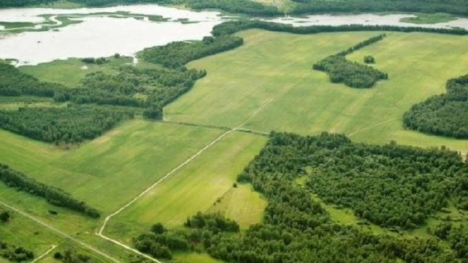 Срок выдачи ДВ-гектара сократят до30 дней