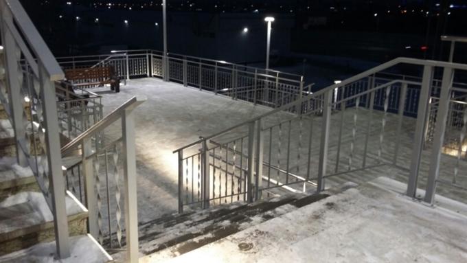 Сергей Дугин поручил ежедневно чистить лестницу вбарнаульский Нагорный парк