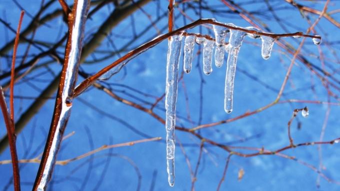 Плюсовая температура возвратится наАлтай вконце недели— Невсе потеряно