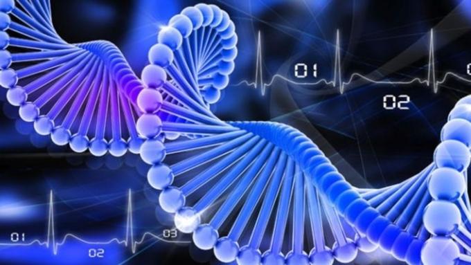 Ученые назвали главную причину появления человека