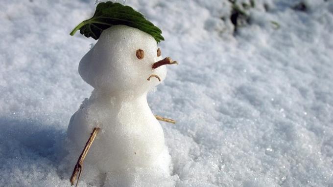 НаАлтае потеплеет до +5, выпадет большое количество снега ипойдет дождь