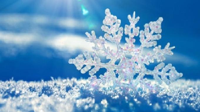 Потепление пришло: вАлтайском крае днем дочетырех градусов мороза